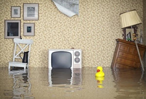content home insurance